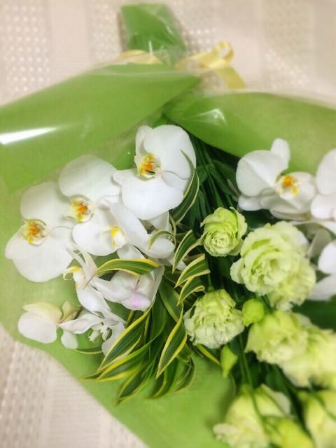 12月3日の誕生花と花言葉♪胡蝶蘭