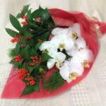 「幸せ」を引き寄せ♪お正月用 胡蝶蘭の花束セット