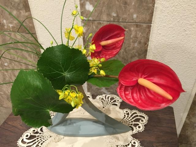 アンスリウム 花言葉 誕生花 風水
