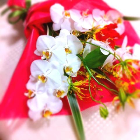 胡蝶蘭 花束 ギフト用