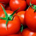 死因はトマト!?トマト致死量チェッカーで限界量を知りましょう