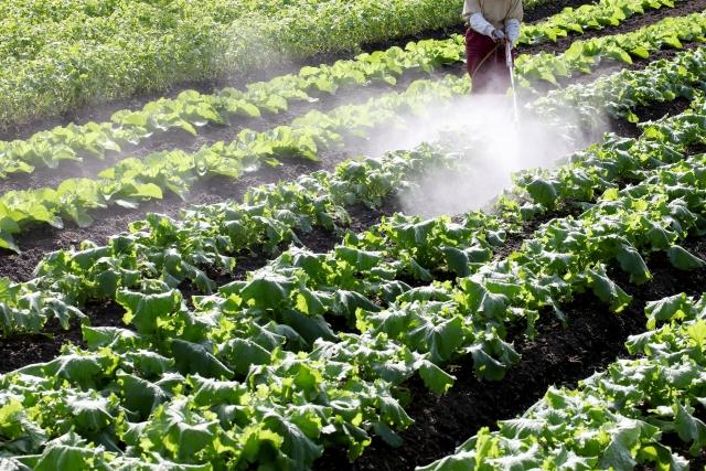 農薬散布風景