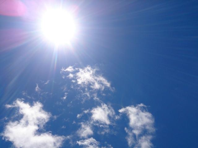 太陽熱を有効利用 ソーラーフードドライヤーを作ってみた!