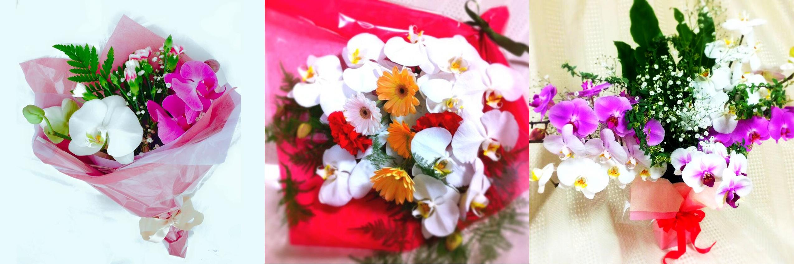 胡蝶蘭の花束三種類