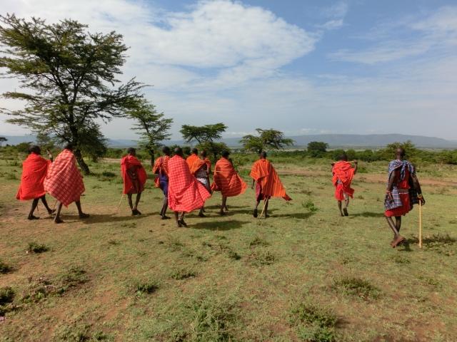 マサイの矢尻 育て方 マサイの人々