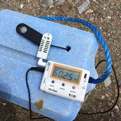 多肉植物 明るさ 照度計で測ってみた 農場外
