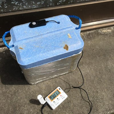多肉植物 明るさ 照度計で測ってみた 玄関