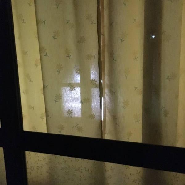 防寒対策の簡易温室 LEDめっちゃ明るい・・・