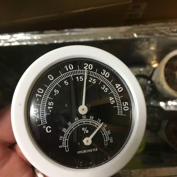 防寒対策の簡易温室 温度計