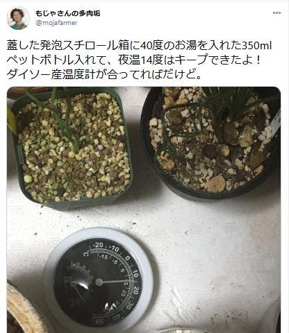 DIY温室のツイート